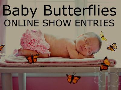 REBORN DOLL SHOW  ~ BABY BUTTERFLIES ~ AUGUST 2015